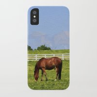 kentucky iPhone & iPod Cases featuring Kentucky by ThePhotoGuyDarren