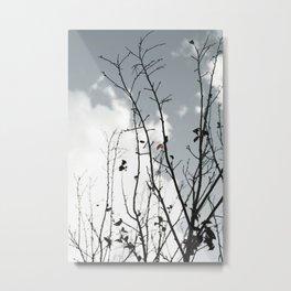 The Last To Fall Metal Print