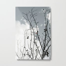 The Last To Fall Metal Print