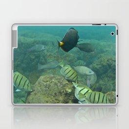 Fish in Hanauma Bay Laptop & iPad Skin