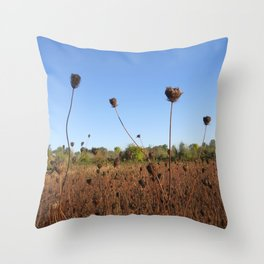 Early Fall Field Throw Pillow