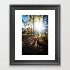 A Morning Stroll Framed Art Print