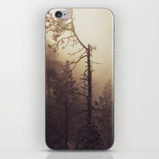 Sunrise Frost and Fog iPhone & iPod Skin