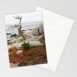 Dead Cypress At Pebble Beach Stationery Cards