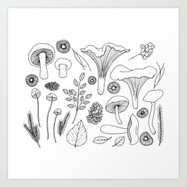 Wild Gatherer III Art Print