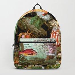 TANGAROA Backpack