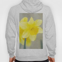 Four yellow narcissus flowers Hoody
