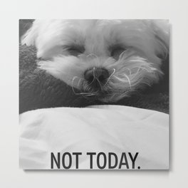 Nelly the dog Metal Print