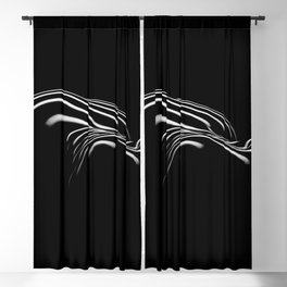 0694- Nude Female Naked BBW Geometric Black White Naked Body Big Abstracted Sensual Sexy Erotic Art Blackout Curtain