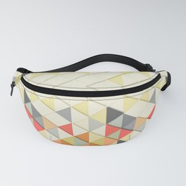 Triangular Fanny Pack