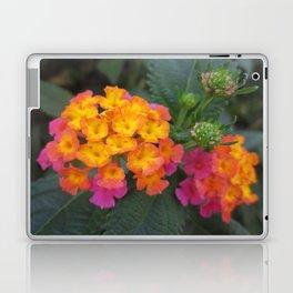 Flowers in Spain Laptop & iPad Skin