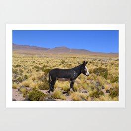 horse by Bruna Fiscuk Art Print