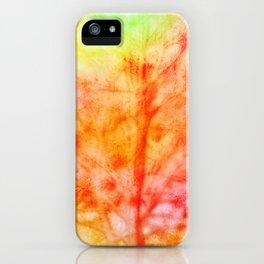 naturalis incrementi iPhone Case