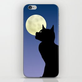 Moon and black cat iPhone Skin