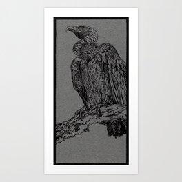 Vulture (DirtyDecibels) Art Print