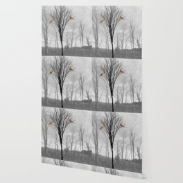 Red birds Cardinals Tree Fog A112 Wallpaper