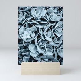Sedum After the Rain - Blue Mini Art Print