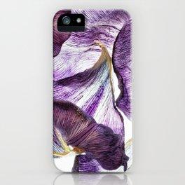 Purple Tulip Petals iPhone Case