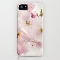 Spring 273 Slim Case iPhone SE