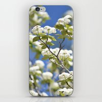 flight iPhone & iPod Skins featuring Flight by Lisa Argyropoulos