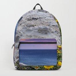 Sea Daisies. Pallenis Maritima. Escullos Beach. Cabo De Gata Natural Park. Backpack