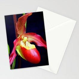 Phrag - mentation Stationery Cards