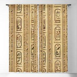 Egyptian hieroglyphs Vintage Texture Blackout Curtain