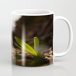 Light In Shade. Snowdrop Flower Bathing In Sun #decor #society6 Coffee Mug