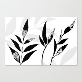 Shadow Play #2 Nature's Best Canvas Print