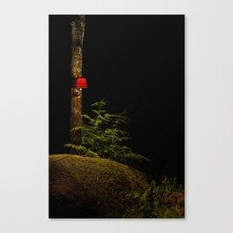 t6 Canvas Print
