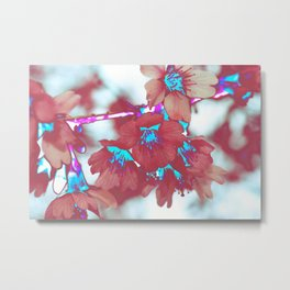 Blossom II Metal Print