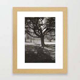 In the Heart of Life Framed Art Print
