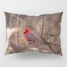 Cardinal - Bright Red Male Bird Rests in Raindrops Pillow Sham