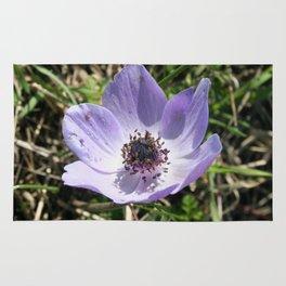 Lilac Blue Anemone Coronaria Wild Flower Rug