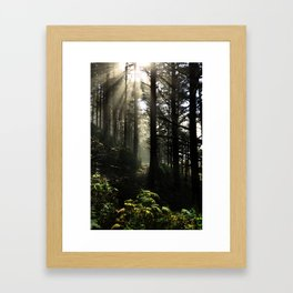The Path Back Home Framed Art Print