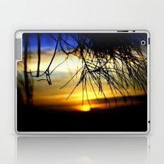 Sunset between pine Needles Laptop & iPad Skin