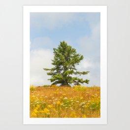 Meadow Warden Art Print