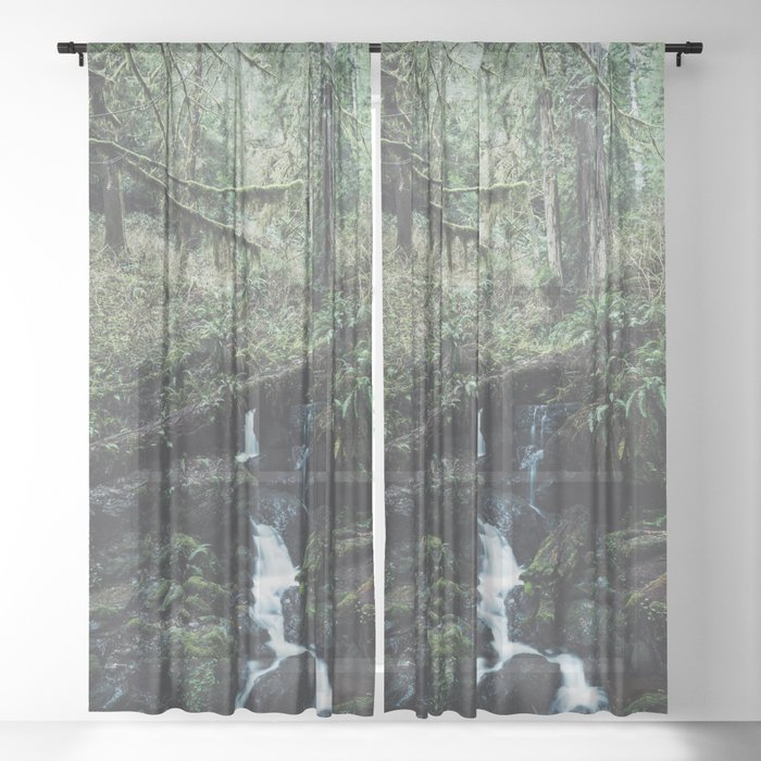 California Redwood Rainforest - Nature Photography Sheer Curtain