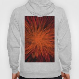 Energy Burst Hoody