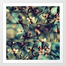 Vintage Blossoms - Triptych Art Print