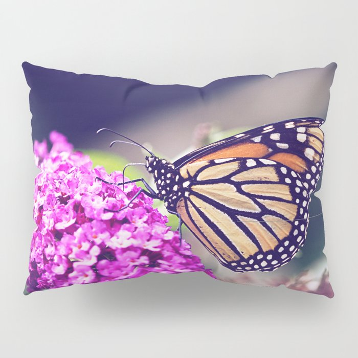 Butterfly Dreams Pillow Sham