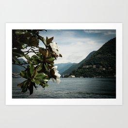 Magnolia on the Lake Art Print