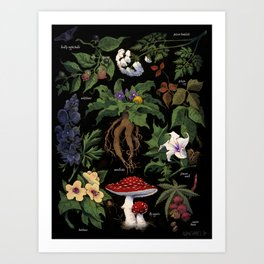 Poison Plants Art Print