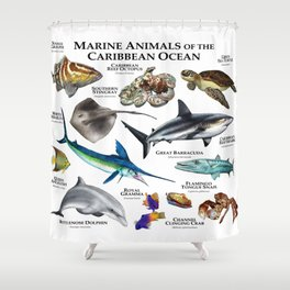 Marine Animals of the Caribbean Ocean Shower Curtain