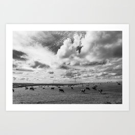 Cows in a field Art Print