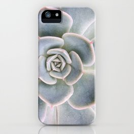 Nature Photography | Cactus Art | Pink and Blue Succulent | Plant | Botanical iPhone Case