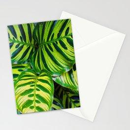Leaf 1 Stationery Cards