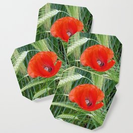 The Red Poppy in the Field Coaster