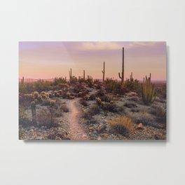 Sonoran Sunset Metal Print