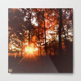 Dawn in the Woods Metal Print